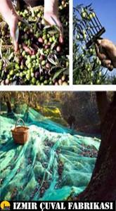 zeytin toplama ortusu 5 5
